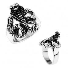 Masywny stalowy pierścionek, lśniące ramiona, patynowany wąż - kobra
