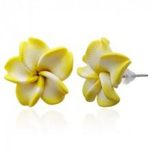 Kolczyki z masy FIMO - żółto-biały kwiat